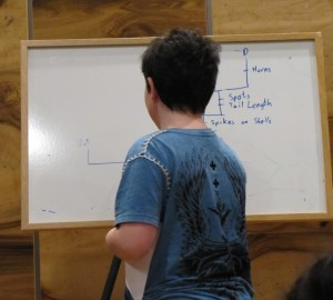 An audience member draws the best evolutionary tree. Photo by Jennifer Li. Contributed by NC Open Minds Café.