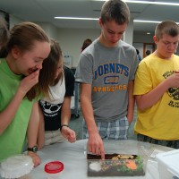 Teens make some new friends of the two- and six-legged varieties. Photo by Kellie Lewis.