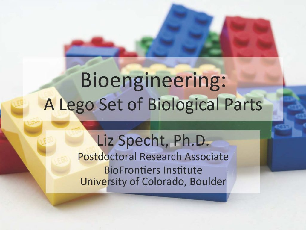 Bioengineering-activity
